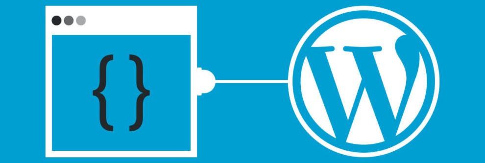 WordPress Freelancer İstanbul