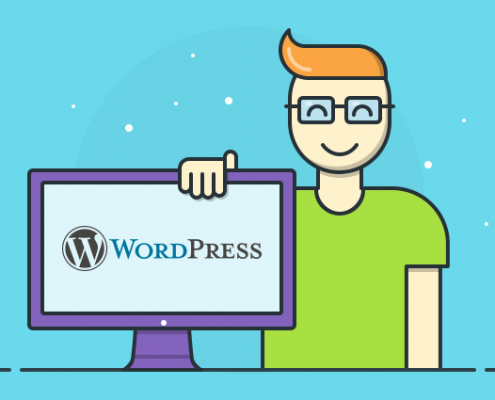 WordPress Freelancer İstanbul