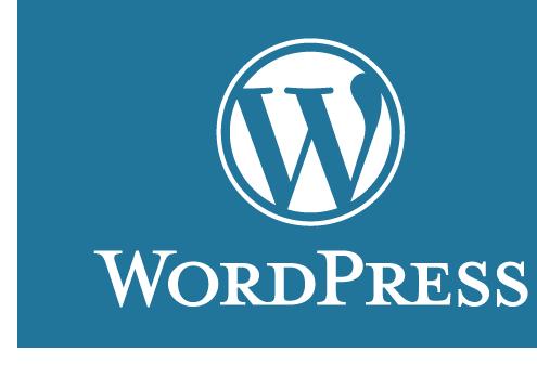 WordPress Ücretli Destek