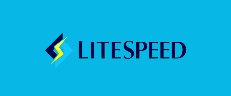 LiteSpeed ile Website Optimizasyonu