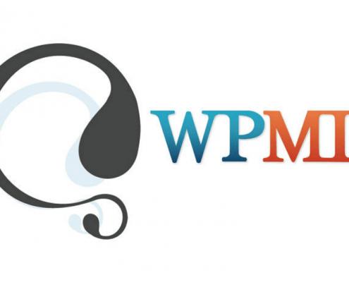 WPML Kurulumu ve Destek