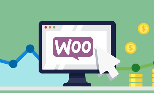 WooCommerce'a AdWords Kurulumu
