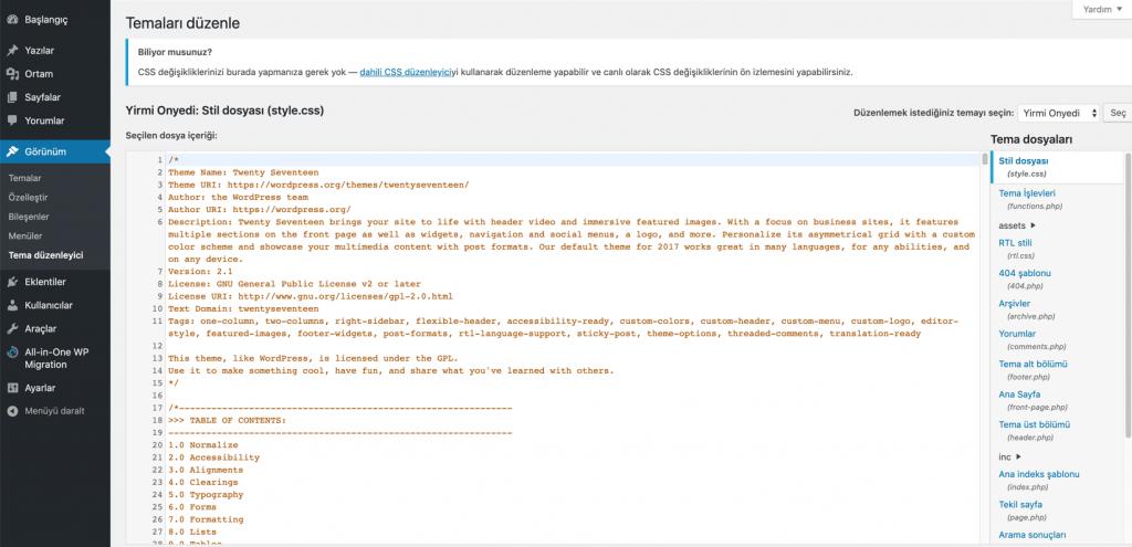 WordPress Tema Düzenleme