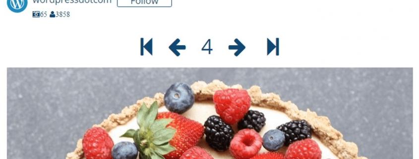 WordPress Instagram Eklentisi Entegrasyonu