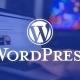 WordPress Admin Panel Güvenlik Önlemi