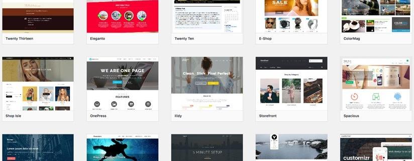 WordPress Tema Bulma ve Seçme Uzmanı