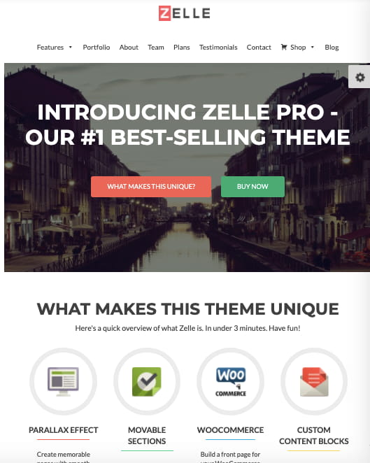 Zelle Pro best business consulting WordPress theme