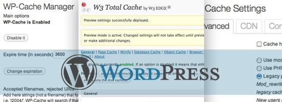 W3 Total Cache Güvenli midir Veritabanı Cache Mantıklı mı