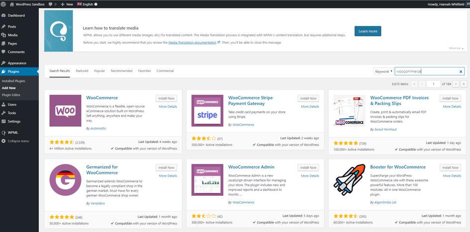 WordPress Alışveriş Sitesi Kurmak