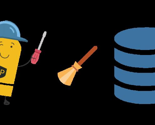Wordpress Veritabanı Temizleme Nasıl Yapılır?